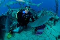 divemaster-scuba diving crete chania