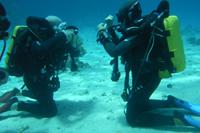 master-scuba diving crete chania