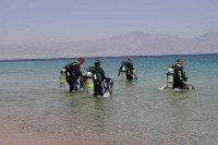 shorediving-scuba diving crete chania